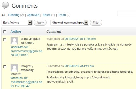Slovenský spam na Wordpresse